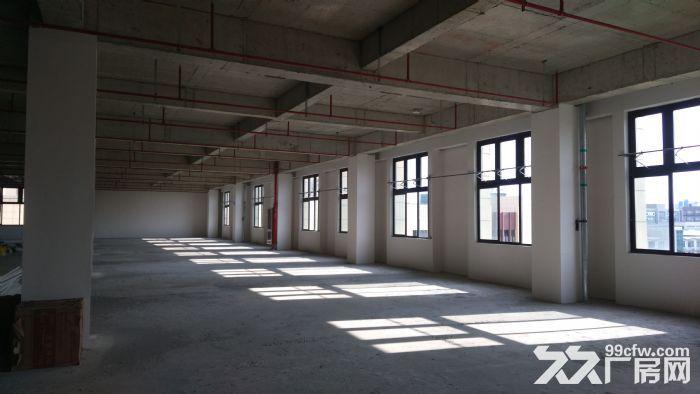 浦江新园区可环评层高7米适研发办公仓储等行业-图(3)