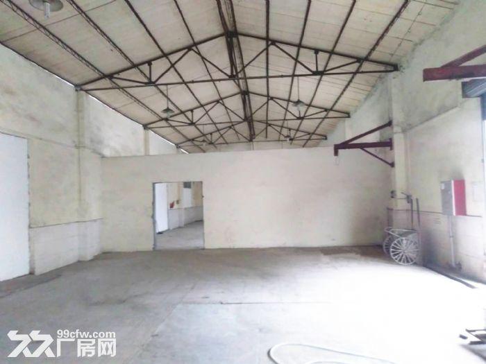 亚运大道−新独院厂房2千方高9米,方正实用−适合各行业-图(5)