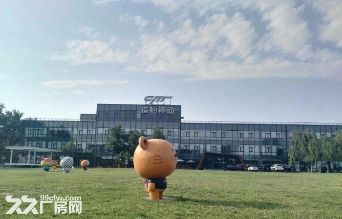 青年路(惠通时代广场)1200平园区环境优雅-图(2)