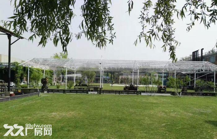 青年路(惠通时代广场)1200平园区环境优雅-图(3)