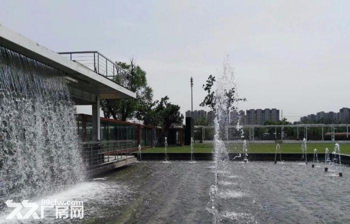青年路(惠通时代广场)1200平园区环境优雅-图(4)