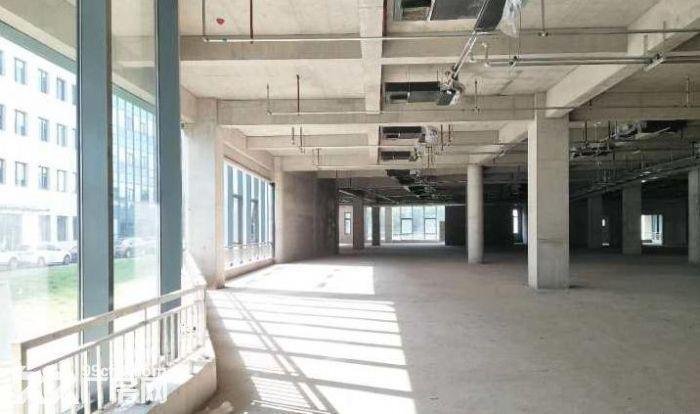青年路(惠通时代广场)1200平园区环境优雅-图(8)