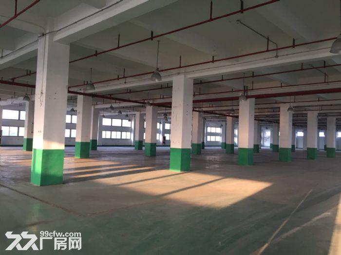 周浦工业园内独栋双层厂房分割出租1.4元起-图(2)
