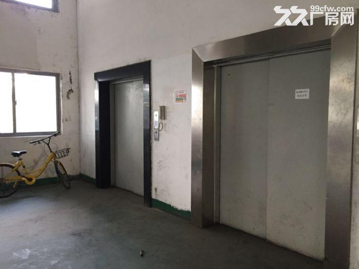 周浦工业园内独栋双层厂房分割出租1.4元起-图(3)