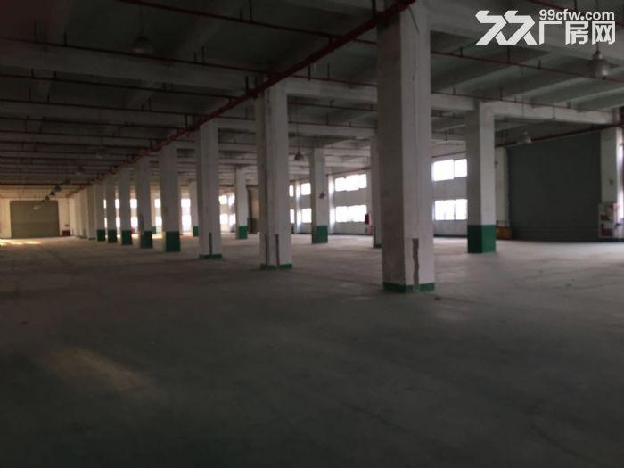 周浦工业园内独栋双层厂房分割出租1.4元起-图(4)