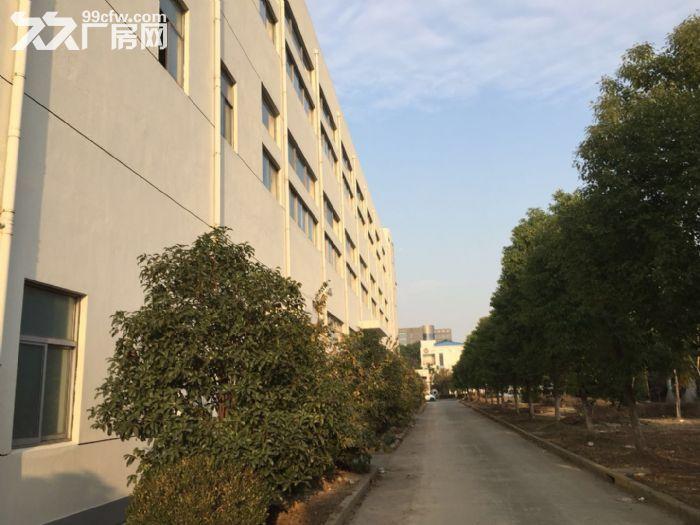 周浦工业园内独栋双层厂房分割出租1.4元起-图(5)
