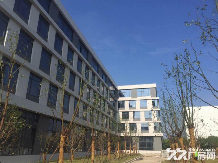 闵行漕河泾园区新建标准研发生产厂房1000平出租-图(2)