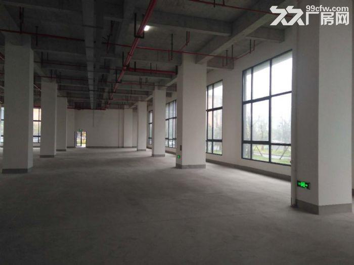 闵行漕河泾园区新建标准研发生产厂房1000平出租-图(5)