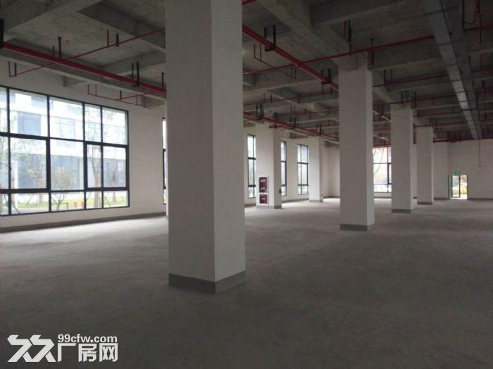 闵行漕河泾园区新建标准研发生产厂房1000平出租-图(4)