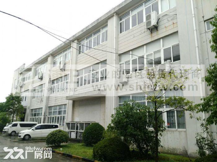 康桥东路底楼1000平层高6米招租-图(1)