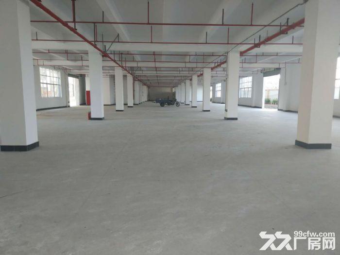 永和开发区工业园每栋4层8000方-图(2)