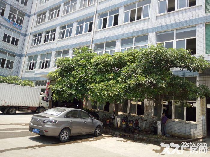 西柯工业区独栋厂房12000平出售-图(1)