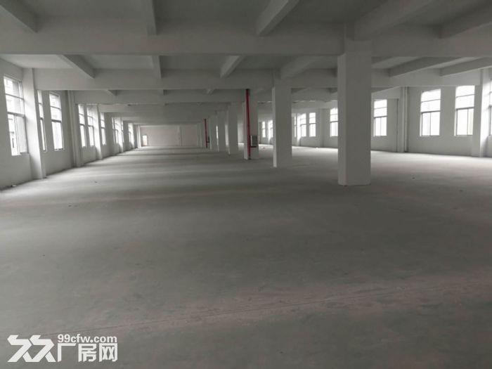 季华二路附近1100㎡厂房招租-图(5)