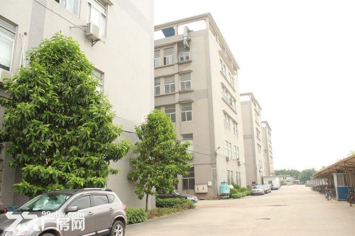 季华二路附近1100㎡厂房招租-图(8)