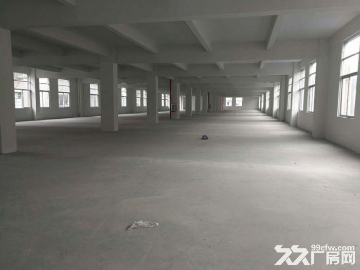 出租季华路附近1100㎡标准厂房-图(5)