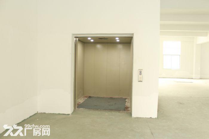 季华二路附近1100㎡标准厂房招租-图(8)