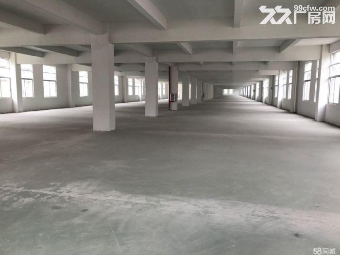 出租季华二路附近1100㎡标准厂房-图(3)