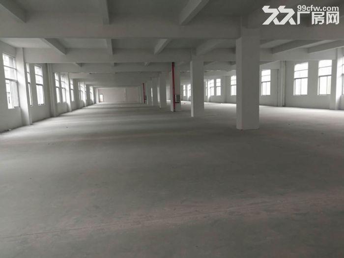 出租季华二路附近1100㎡标准厂房-图(2)
