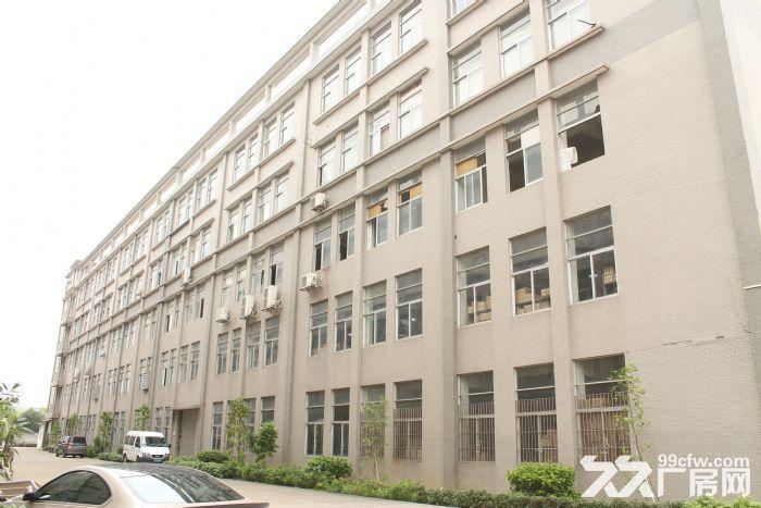 出租季华二路附近1100㎡标准厂房-图(7)