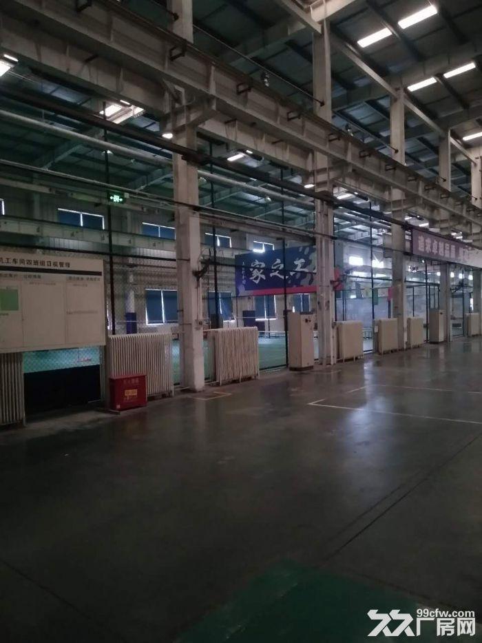 高12米4000平米厂房可研发组装-图(2)