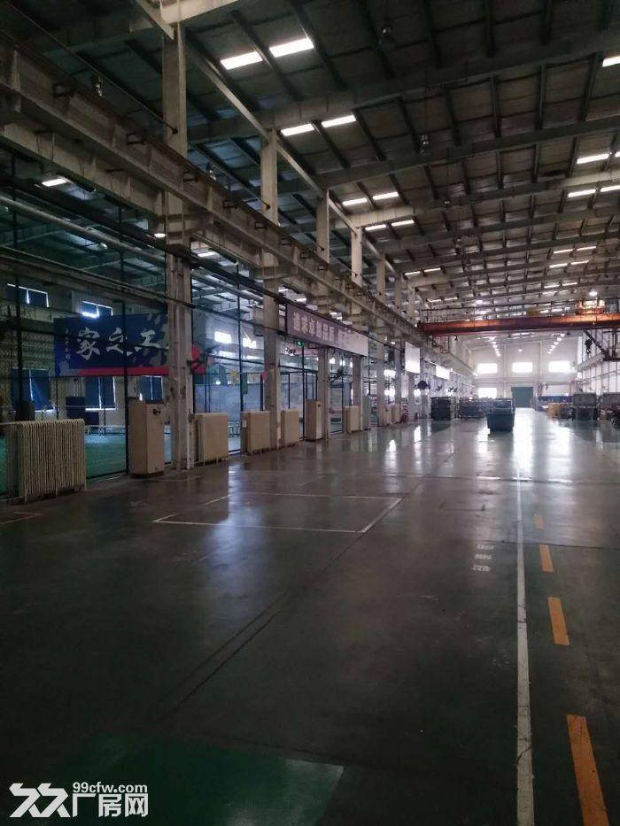 高12米4000平米厂房可研发组装-图(3)