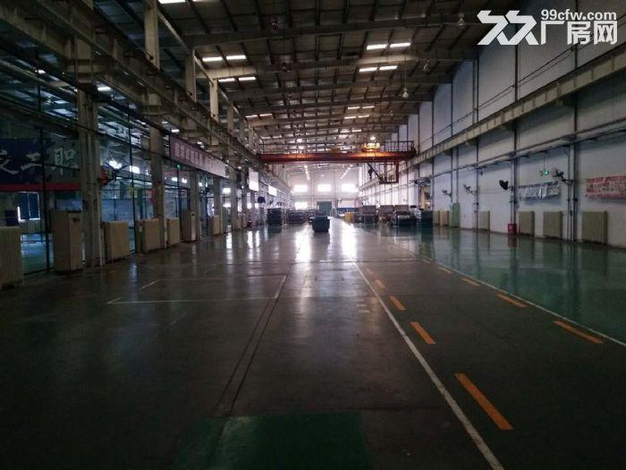 高12米4000平米厂房可研发组装-图(4)