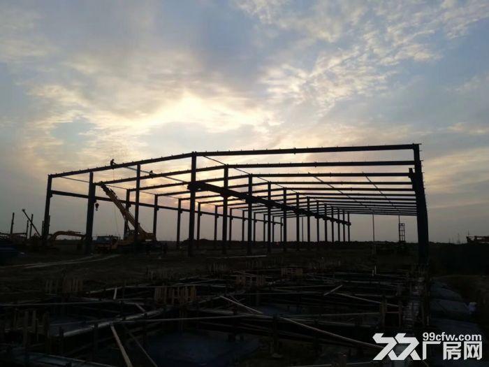 沧州正规标准化厂房出租-图(4)