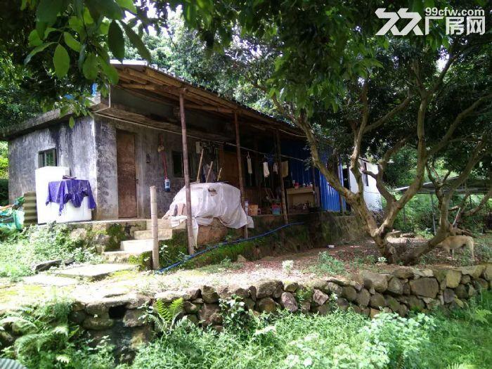 从化区温泉镇105国道边附近约90亩果园房屋转让-图(3)