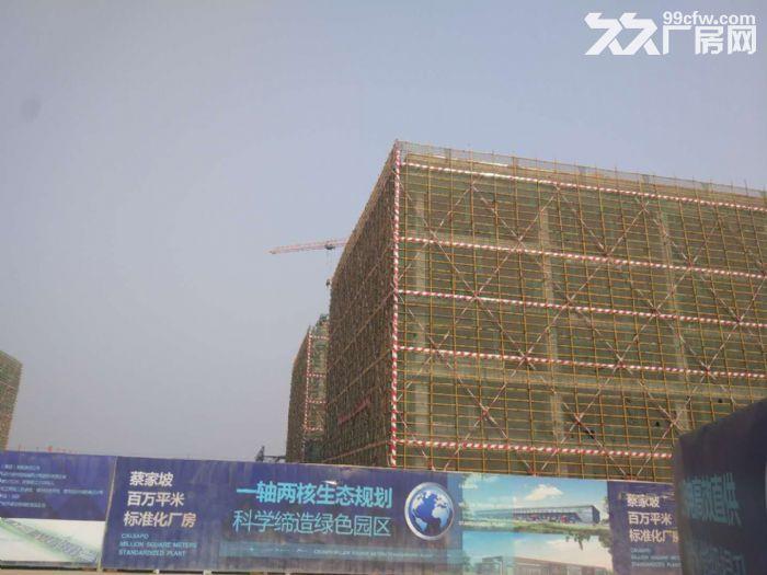 百万米标准化厂房项目-图(1)