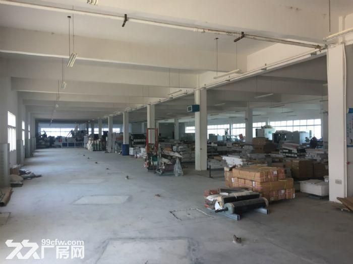 汉川32亩工业用地及厂房仓库整体转让-图(4)