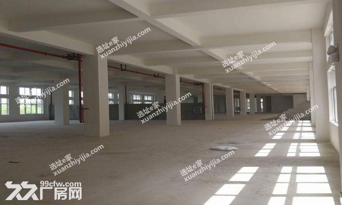 阳逻经济开发区2400㎡标准整栋框架厂房出售-图(3)