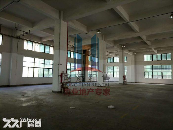 萝岗科学城2700方一楼厂房招租-图(2)