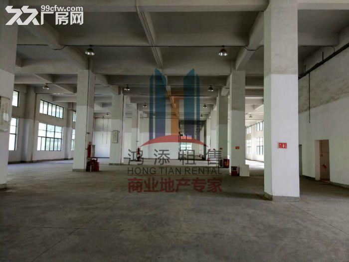 萝岗科学城2700方一楼厂房招租-图(1)
