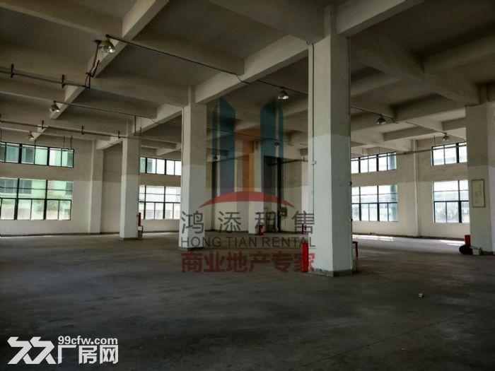 萝岗科学城2700方一楼厂房招租-图(3)