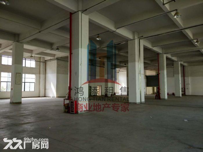 萝岗科学城2700方一楼厂房招租-图(6)