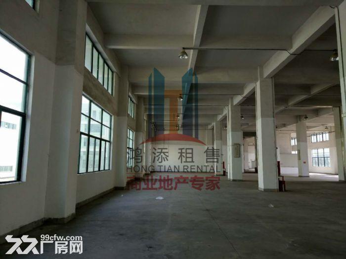 萝岗科学城2700方一楼厂房招租-图(8)