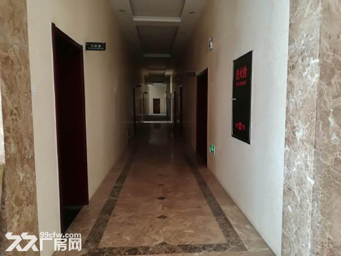 廊坊市霸州区50000平厂库房-图(4)