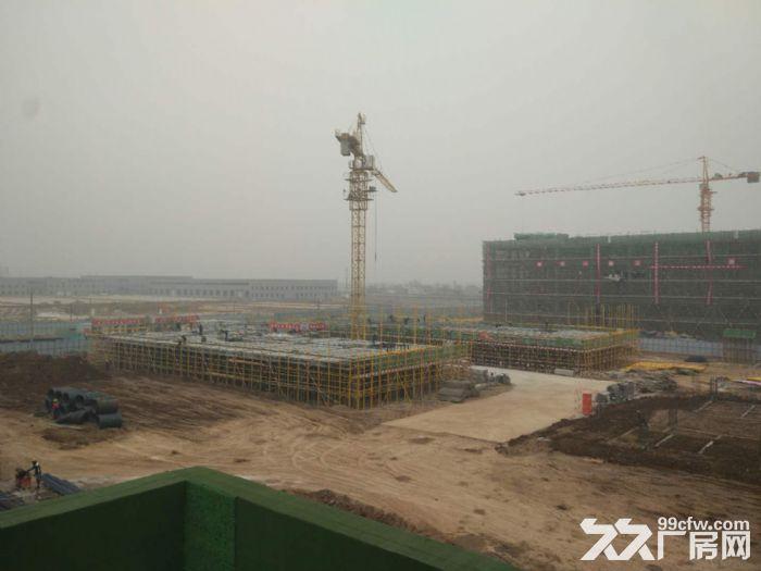 蔡家坡百万平米标准化厂房-图(2)