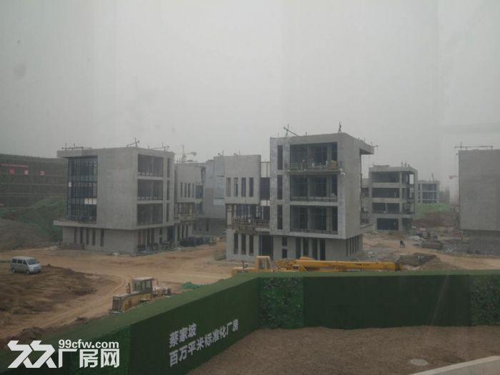蔡家坡百万平米标准化厂房-图(4)