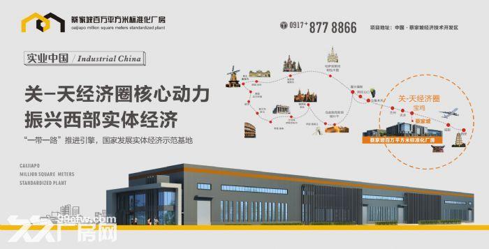 蔡家坡百万平米标准化厂房-图(5)