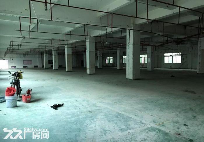 急租!东城主山标准一楼1900平带装修厂房-图(2)