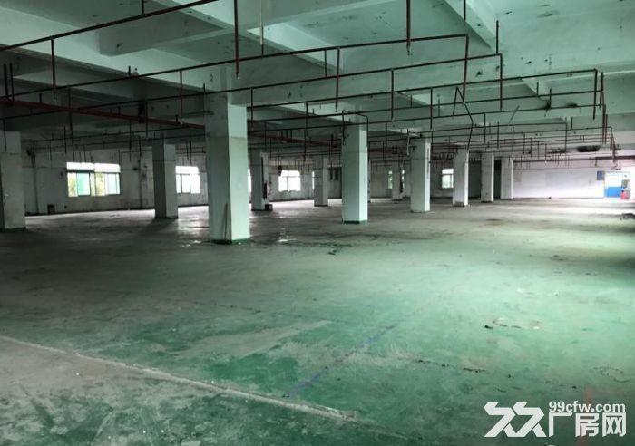 急租!东城主山标准一楼1900平带装修厂房-图(4)