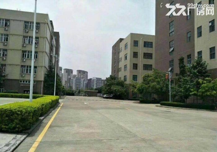 原房东!补贴!龙岗宝龙12500平红本独栋厂房出租-图(1)