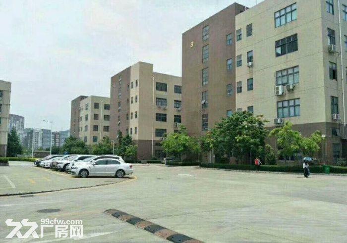 原房东!补贴!龙岗宝龙12500平红本独栋厂房出租-图(4)