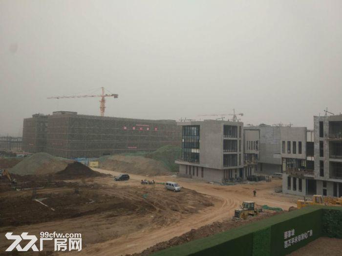 百万平米标准化厂房可租可售两年免租50年产权-图(2)