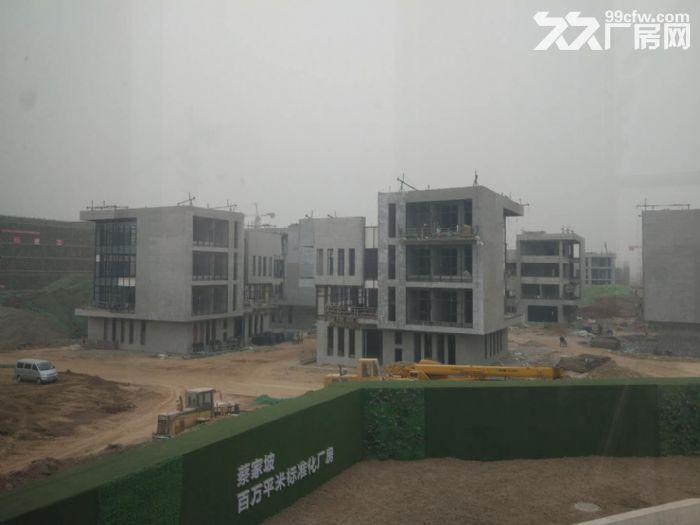 百万平米标准化厂房可租可售两年免租50年产权-图(4)