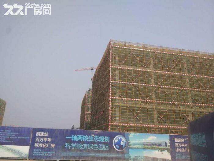 百万米标准化厂房可租可售两年免租50年产权-图(1)