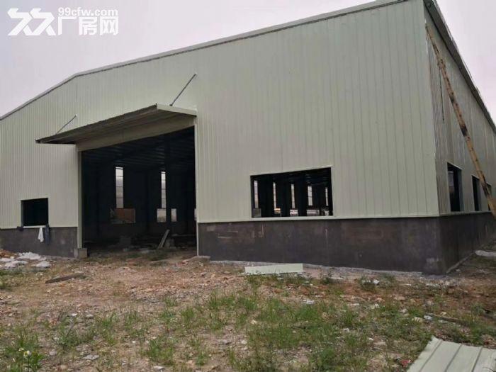 滴水7米泰美镇约3880平方全新钢构厂房招租-图(1)