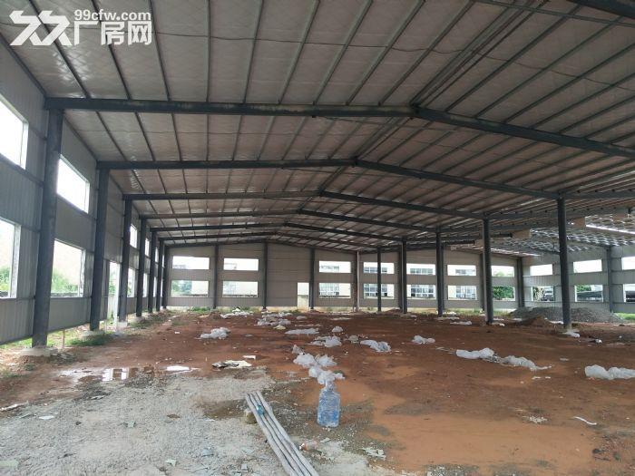 滴水7米泰美镇约3880平方全新钢构厂房招租-图(2)