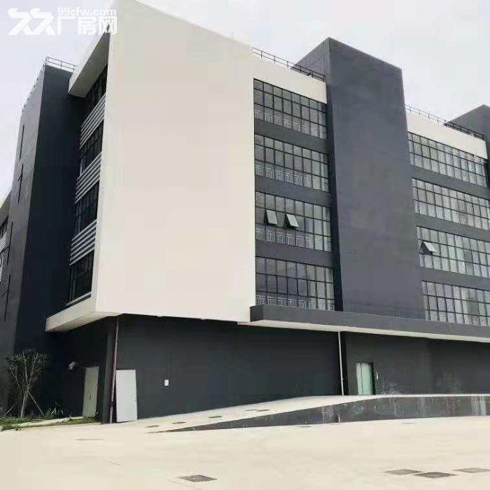 翔安洪溪南路3层厂房每层2400平米出租-图(2)